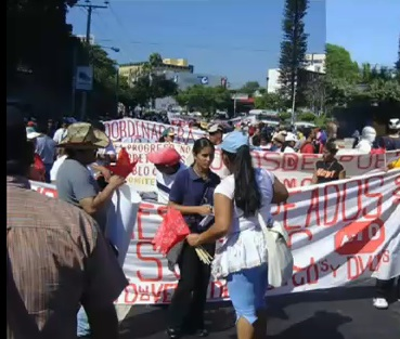Market Vendors against free trade